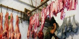 process of legalizing illegal slaughterhouses